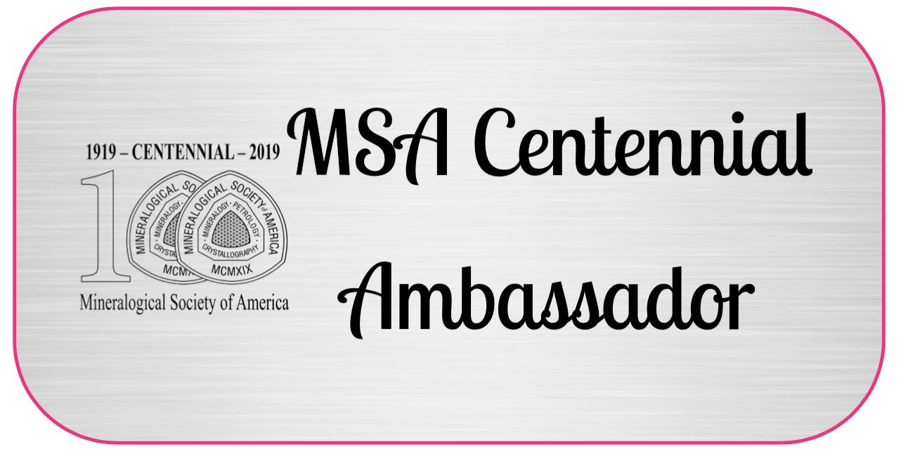 MSA Centennial Ambassador sticker